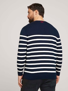 striped sweater made with organic cotton   - 2 - Men Plus