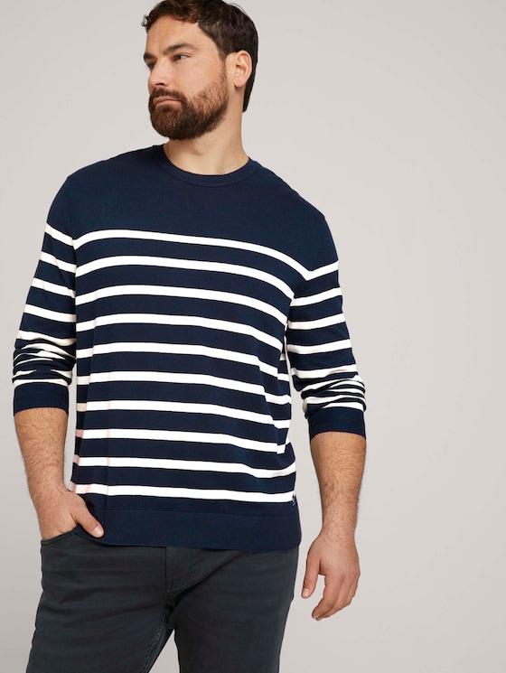 gestreiftes Sweatshirt mit Bio-Baumwolle  - Männer - Blue White Stripe - 5 - Men Plus